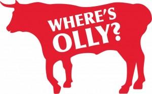 Where's Olly?